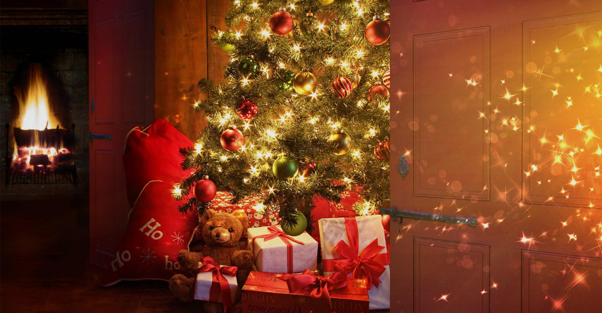 De mooiste Nordmann Excellent kerstbomen in Haarlem vanaf € 15,-