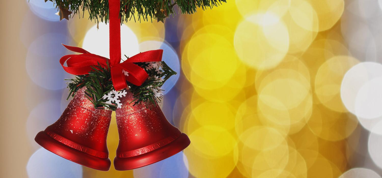 Veelgestelde vragen over Nordmann Excellent kerstbomen in Haarlem