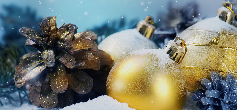 Kerstboom bezorgen in regio Haarlem