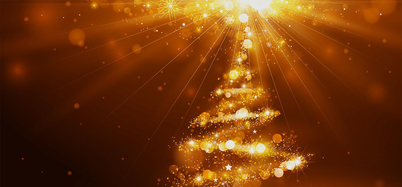 Kerstbomen voor bedrijven in Haarlem